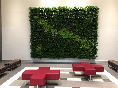 Living Wall Plants For Office