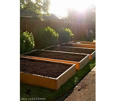 Best Making wooden planters garden