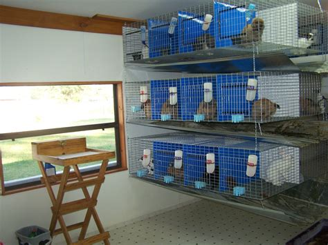 Meat Rabbit Barns For Sale