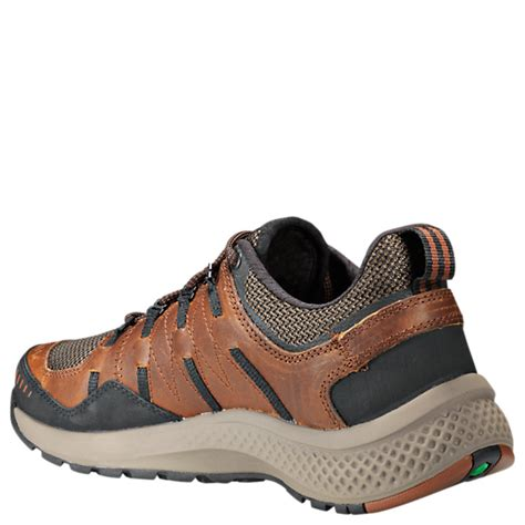 Men's Flyroam Trail Low