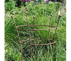 Best Metal garden plant supports