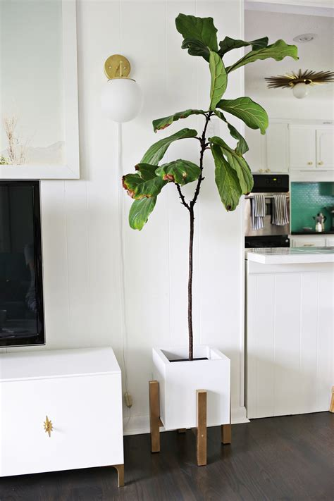 Mid Century Wood Plant Stand Diy