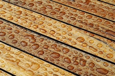 Moisture Content Woodworking