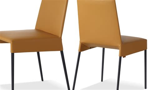 Montis Dining Chairs