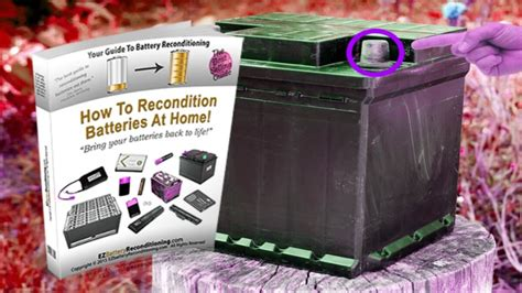 Most reliable ez battery reconditioning method pdf
