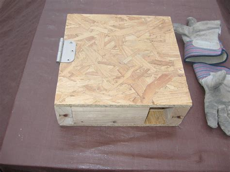 Mouse-In-Box-Plans