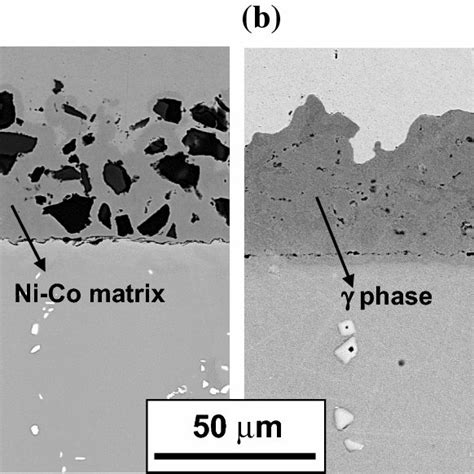 Multiscale Investigations Of Nanoprecipitate Nucleation .