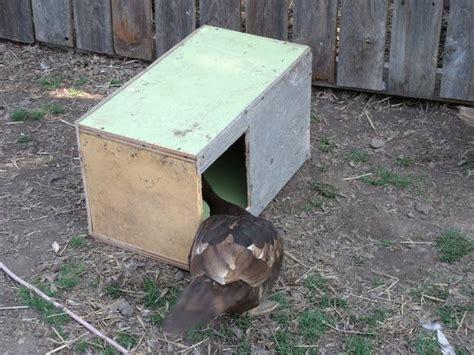 Muscovy-Duck-Nesting-Box-Plans