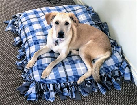 No Sew Dog Bed Diy From Old