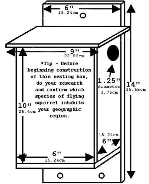 Northern Flying Squirrel Nest Box Plans