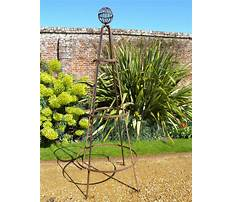 Best Obelisk for garden plants