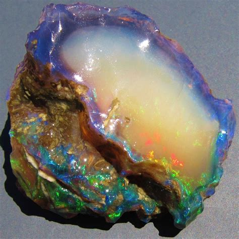 Opalized Wood In Northern Nevada