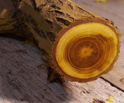 Orange-Osage-Woodworking