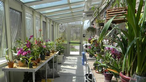 Orchid Greenhouse Plans
