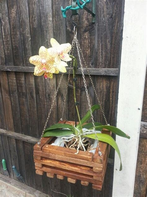 Orchid Planters Wood Diy Cupcake