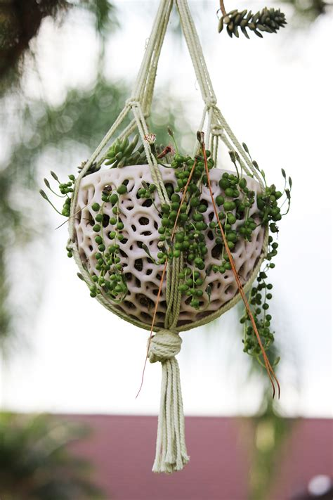 Orchid Planters Wood Diy Headboard