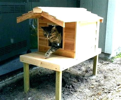 Outdoor Insulated Chicken Shelter Plans