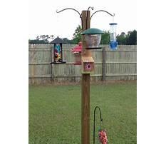 Best Outdoor bird feeder stands