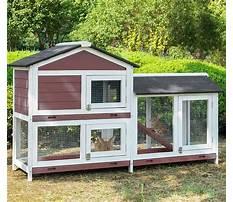 Best Outdoor hutches