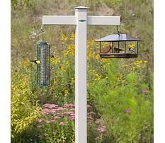 Best Outside bird feeder poles