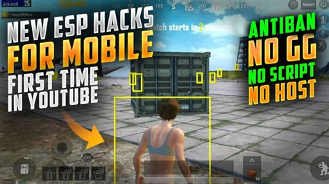 PUBG Mobile File Hack