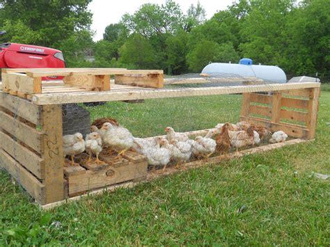 Pallet-Chicken-Tractor-Plans