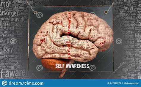 Part Of Brain Self Awarness And Self Aware Trait Pathfinder