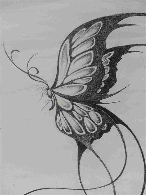 Pencil Drawn Butterflies