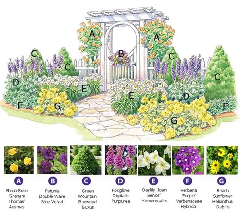 Perennial-Garden-Plans-Zone-9
