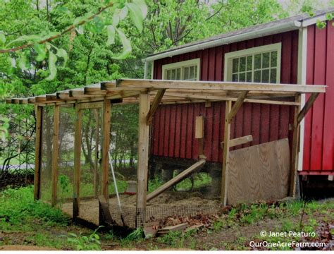 Perfect-Chicken-Coop-Plans