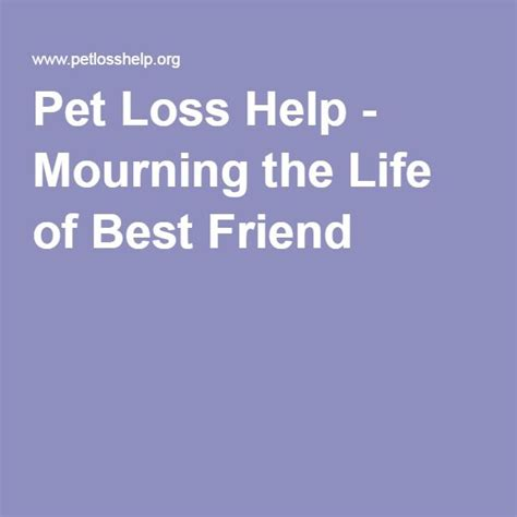 @ Pet Loss Help - Mourning The Life Of Best Friend.