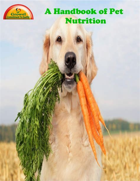 Pet Nutrition Guide And Flexible Auto Body Sanding Blocks