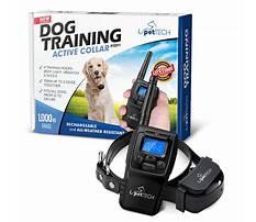 Best Pettech dog training collar sync instructions.aspx