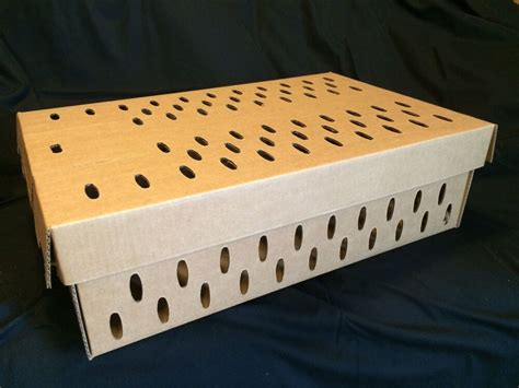 Pheasant-Transport-Box-Plans