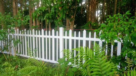 Picket Fence Plants