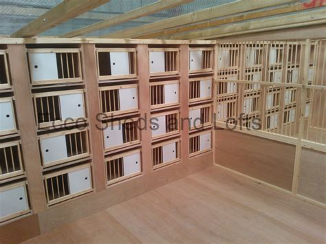Pigeon Box Perch Plans Home