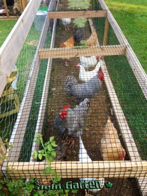 Pinterest Diy Chicken Run