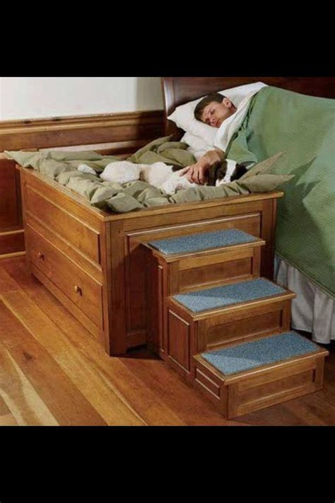 Pinterest Dog Bed Diy Home