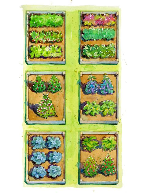 Plan-View-Of-Raised-Garden-Bed