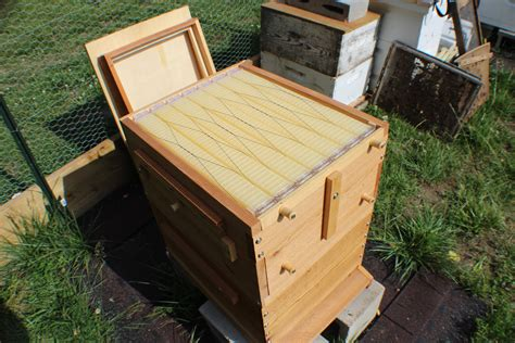 Plans For Building A Beehive Box For Sale
