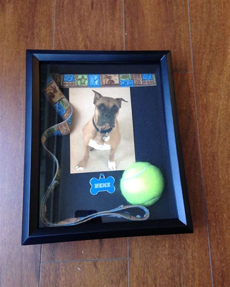 Plans-For-Building-A-Pet-Shadow-Box