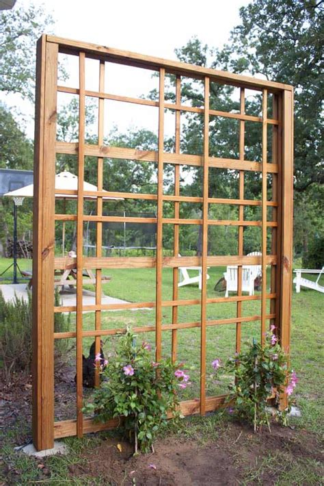 Plans-For-Making-A-Trellis