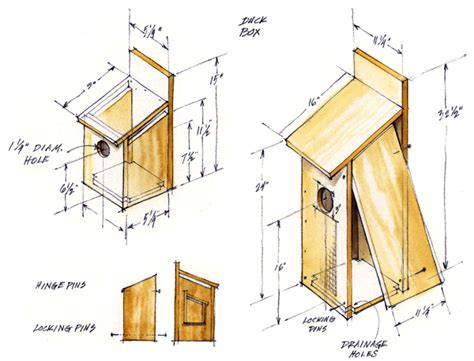 Plans-To-Build-A-Wood-Duck-Box