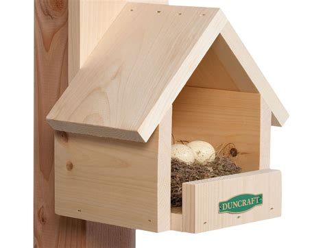 Plans-To-Build-Cardinal-Nest-Shelf