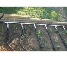 Best Plans for a raised garden bed.aspx