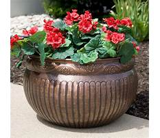 Best Plant pots outdoor