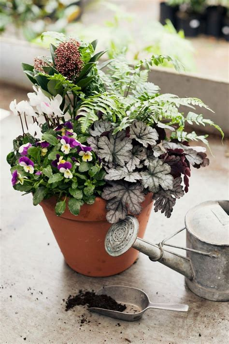 Planter Planting Ideas