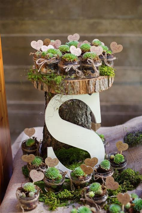 Plants In Table Diy Favors