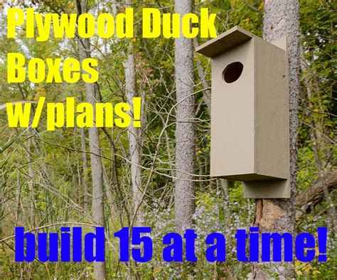 Plywood-Wood-Duck-Box-Plans