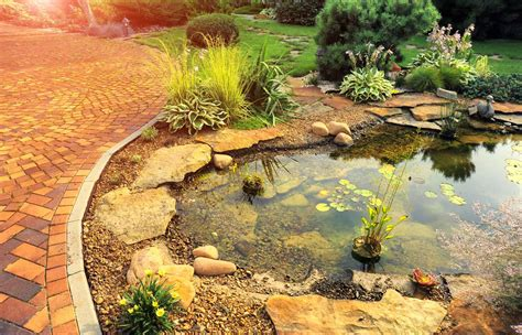 Pond Diy Projects